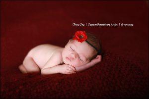 Precious Baby {A}… | Chicagoland Newborn Portraiture Artist