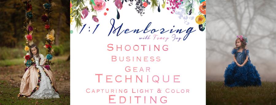 1-1-mentoring