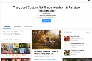 Follow me on BLOGLOVIN' – Lake Zurich Newborn Photographer