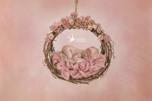 Dearest Brooklyn  |  Long Grove Illinois Newborn Photographer
