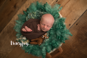 Isaac Newborn – Long Grove Illinois Photography