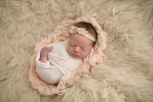 Sweet Evelyn – North West Illinois Newborn Photography